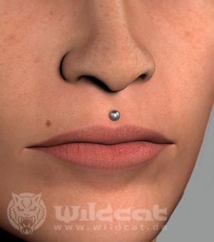 Das Medusa Piercing